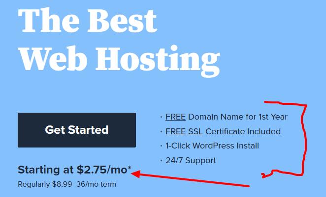 Web Hosting Beginners pricing