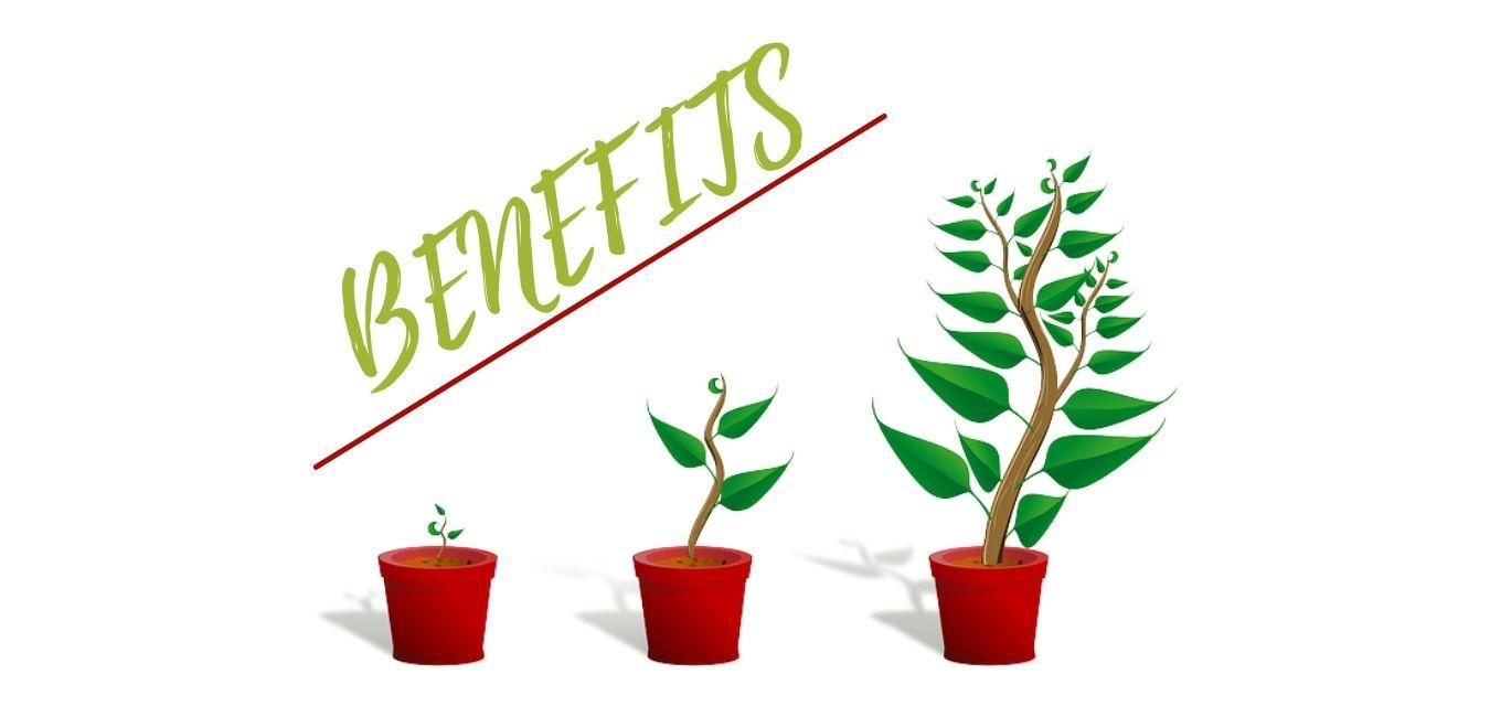 Upwork top rated benefits